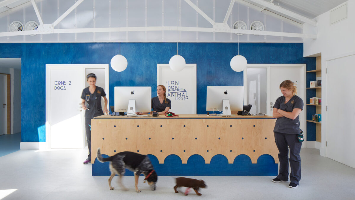 alma-nac-london-animal-hospital-interiors_dezeen_2364_hero-1200x675.jpg